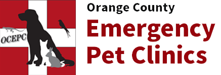Emergency Veterinarian and Animal Hospital in Garden Grove, CA